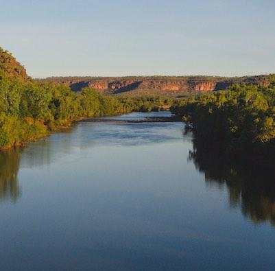 Fish Victoria River
